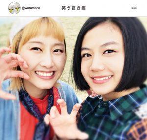 笑う招き猫(2017年4月スタート)